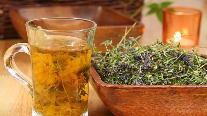 только звезды можно ли пить лаванду как чай скромничают, когда
