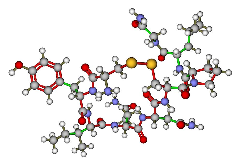 15 Может ли гормон окситоцин помочь алкозависимым?